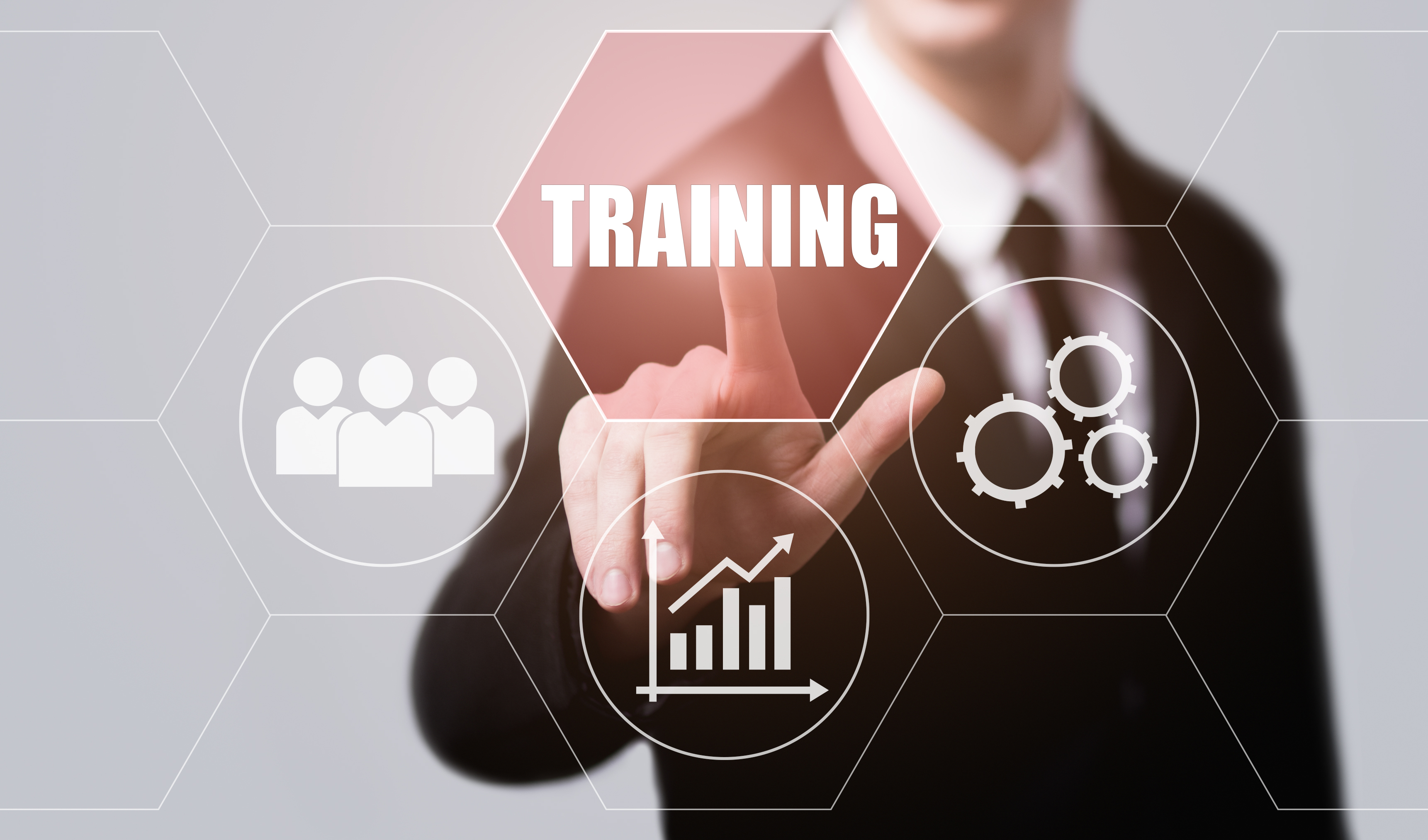 Case Study – Business Strategies and Sales Training 2